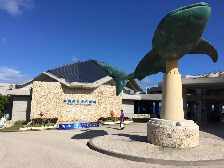 美ら海水族館・バックヤード-601