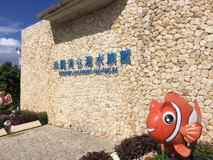 美ら海水族館・バックヤード-604